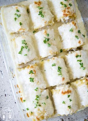 Chicken Alfredo Lasagna Rollups - 30 Minute Back to School Meals
