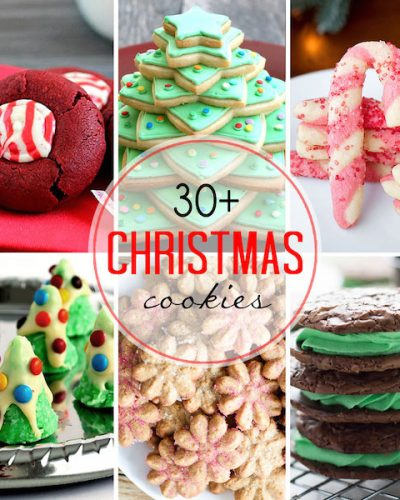 30+ Christmas Cookie Ideas