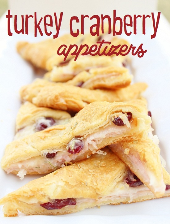 turkey cranberry appetizer
